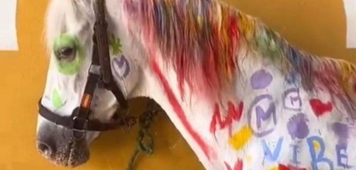 caballo-pintura-escuela-actividad-infantil