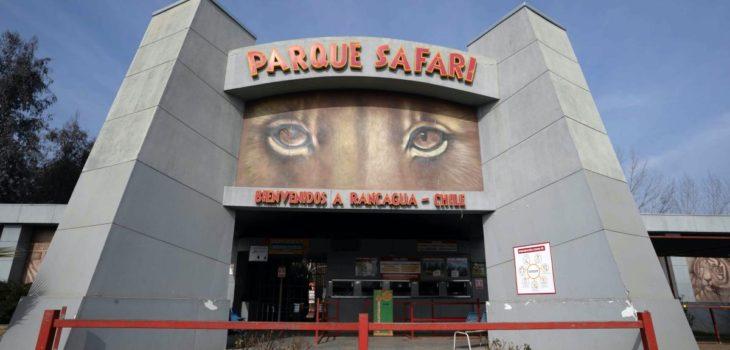 parque-safari-ataque-tigre