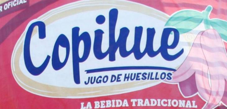 empresa copihue se declara en quiebra