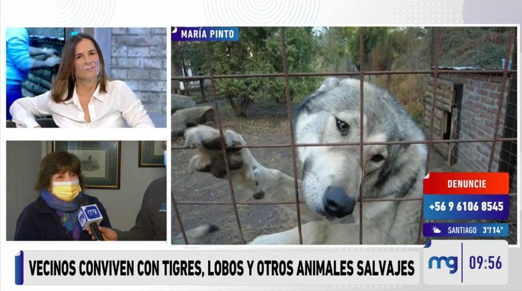 zoológico María Pinto