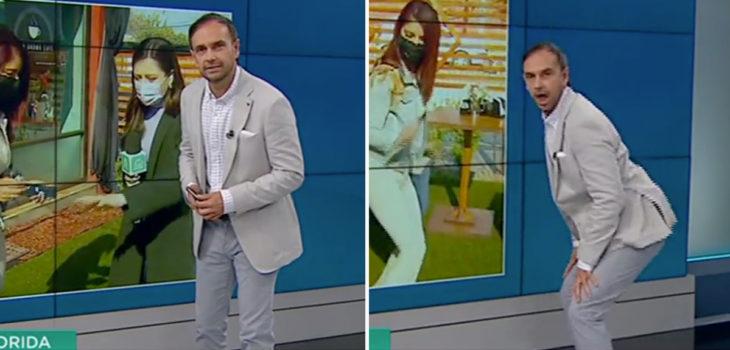 Rodrigo Sepúlveda perrea en Meganoticias