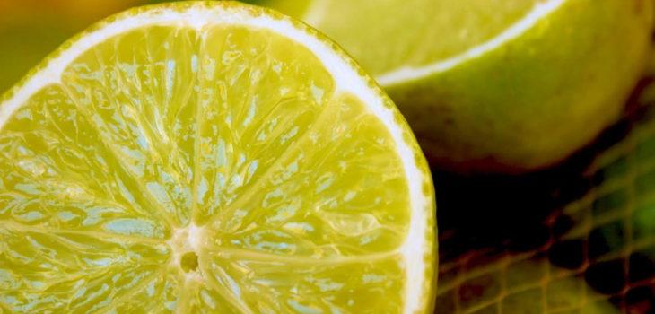 usos prácticos del limón